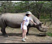Rhino  at  Olpejeta