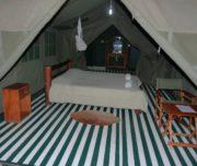 enchoro-wildlife-camp-2