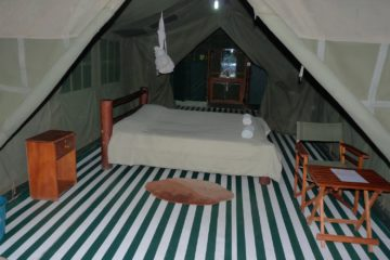 enchoro-wildlife-camp-2
