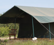 tent-in-fisi-camp