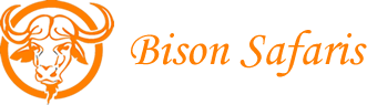 Bison Safaris - Best of Kenya  budget  and  customized  migration safaris
